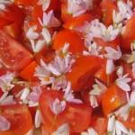 Salade Tomate Ail rose_gr